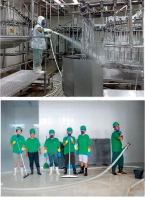 aplicações da mangueira vapor frigorífica